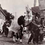 police-escort-phar-lap-to-1930-melbourne-cup_kth1qzsicoo1_1280