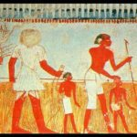 30-The-harvest-is-shown-in-a-wall-painting-in-theTombOfMennaAtThebesEgypt-1024×507