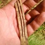 ancient-mouth-harp-