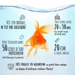 Poisson rouge montage
