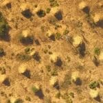 termite-mounds-from-above